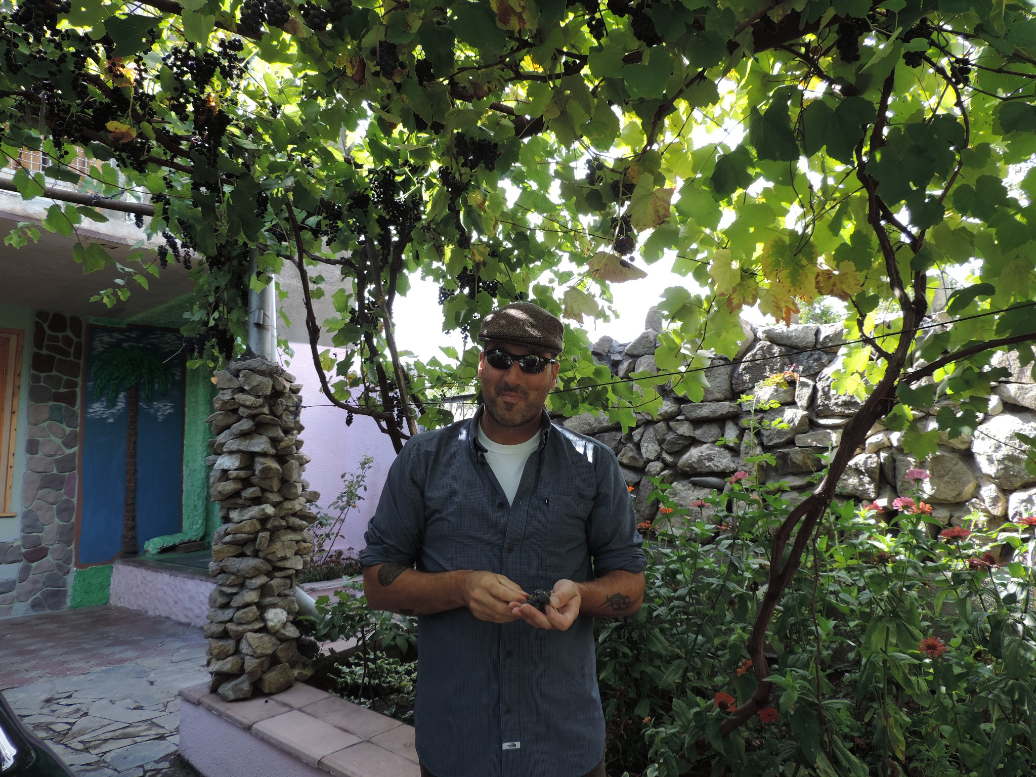 Jason eating grapes right off the vines at our guest house stay