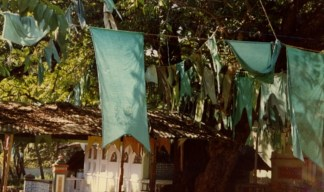 The green flags of the Kataragama Mosque