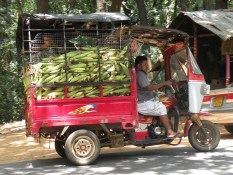 The Corn Mudalali's Red Van, Kurunegala