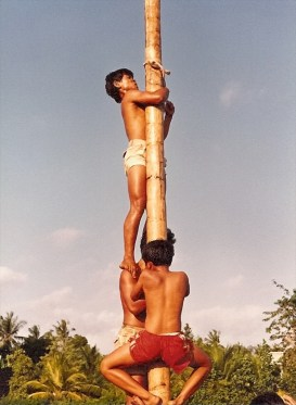 1 The Greasy Pole Competition, Bali, 1985