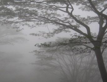 Knuckles Mist 4