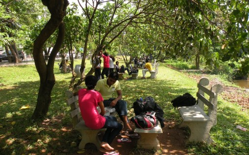 it was terrific to see the new seating area under the trees was already a place to get together with friends