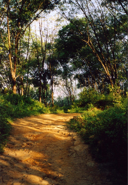 The road to Mahabage