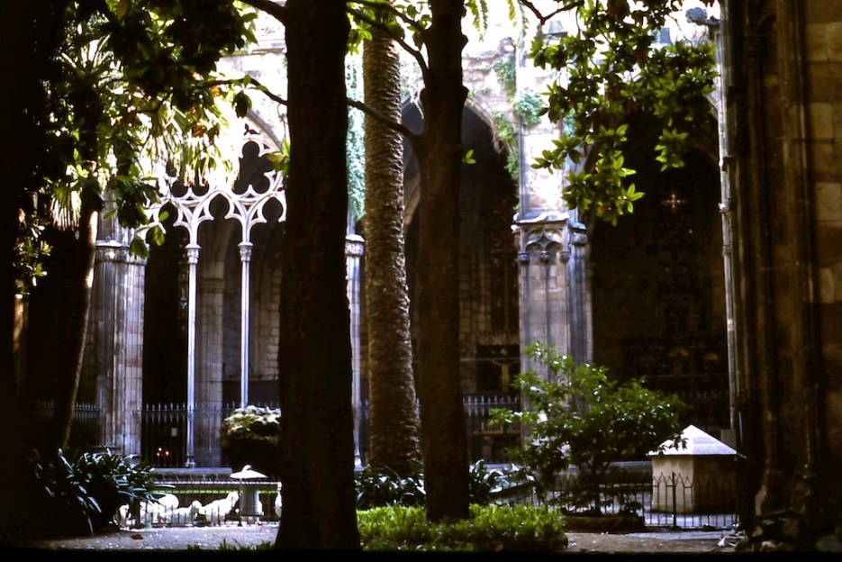 Through the Cloister Windows - Barcelona Cathedral