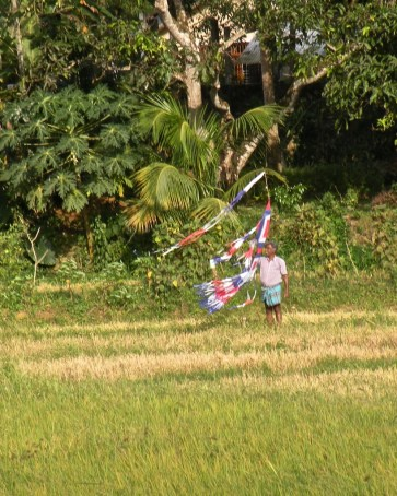 Playtime in the Paddy Fields 7