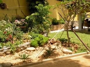 Making a Garden 17