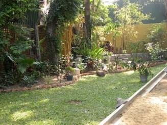 Making a Garden 3