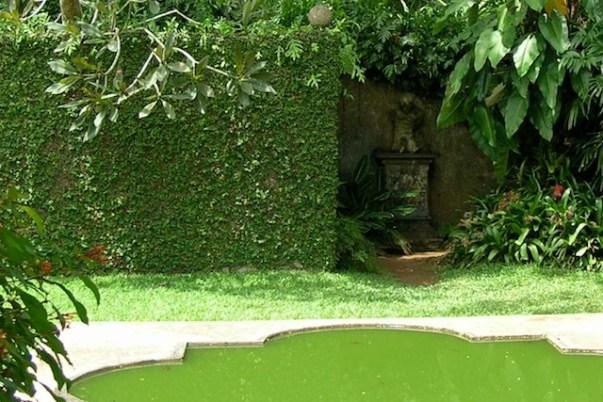 Bathroom Courtyard, Brief