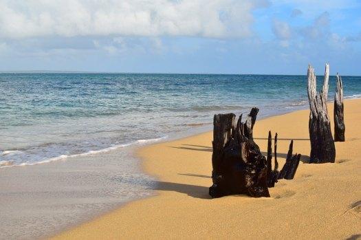 Jomalig beach