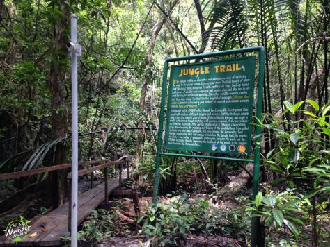 Jungle Trail - Backpacking Palawan