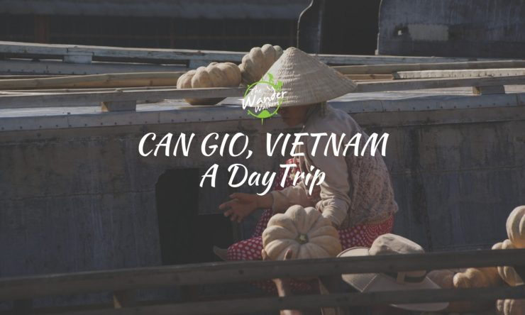 Motorbike Diaries: Can Gio Beach, Vietnam