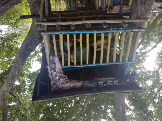 Our treehouse with my hammock. :)