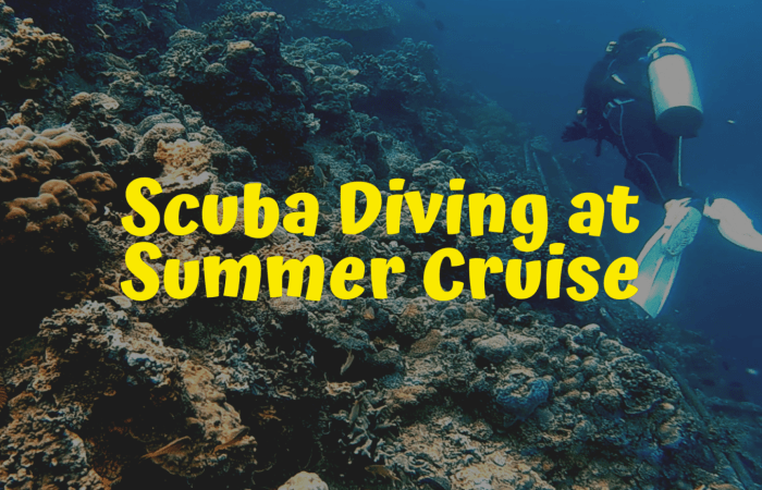 Scuba diving at Summer Cruise