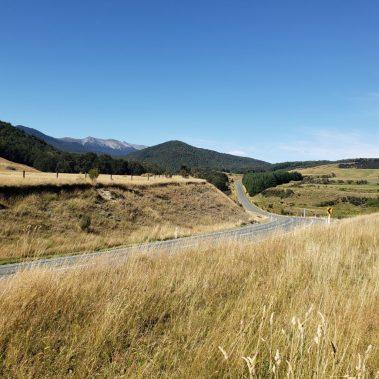 Milford Sound Highway