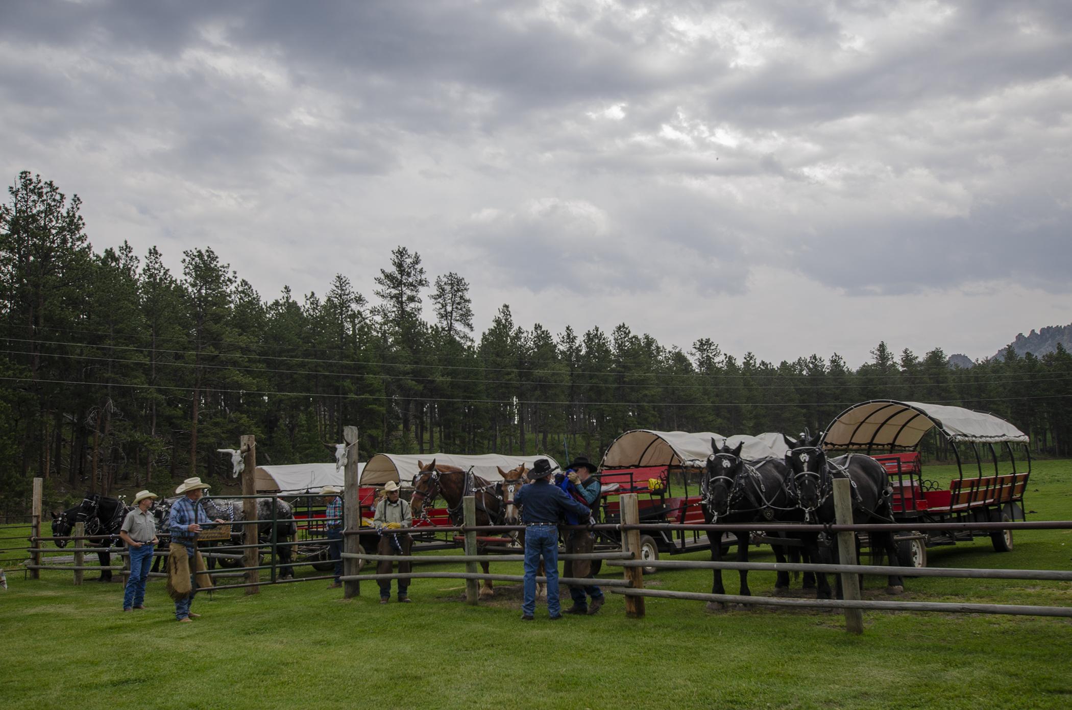 Covered wagons at the Palmer Gulch Chuckwagon