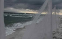 billowing-beach-wedding