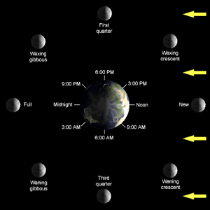 How can we see the Sun and the Moon at the same time?