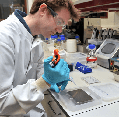 Dr Buckley carrying out the process of collagen fingerprinting to determine which species the bone fragments belong to.Credit: The University of Manchester