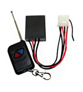 Mojo Remote