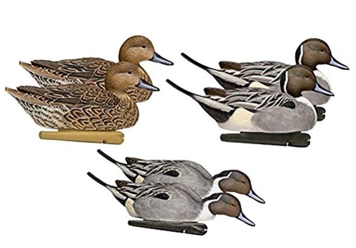 pintail decoys