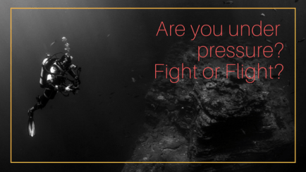 Are you under pressure?Fight or Flight?