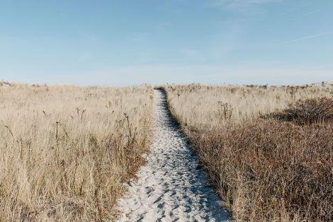 prairie-1246633__480
