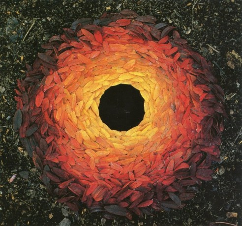 sumach leaves / arranged around a hole, by Andy Goldsworthy