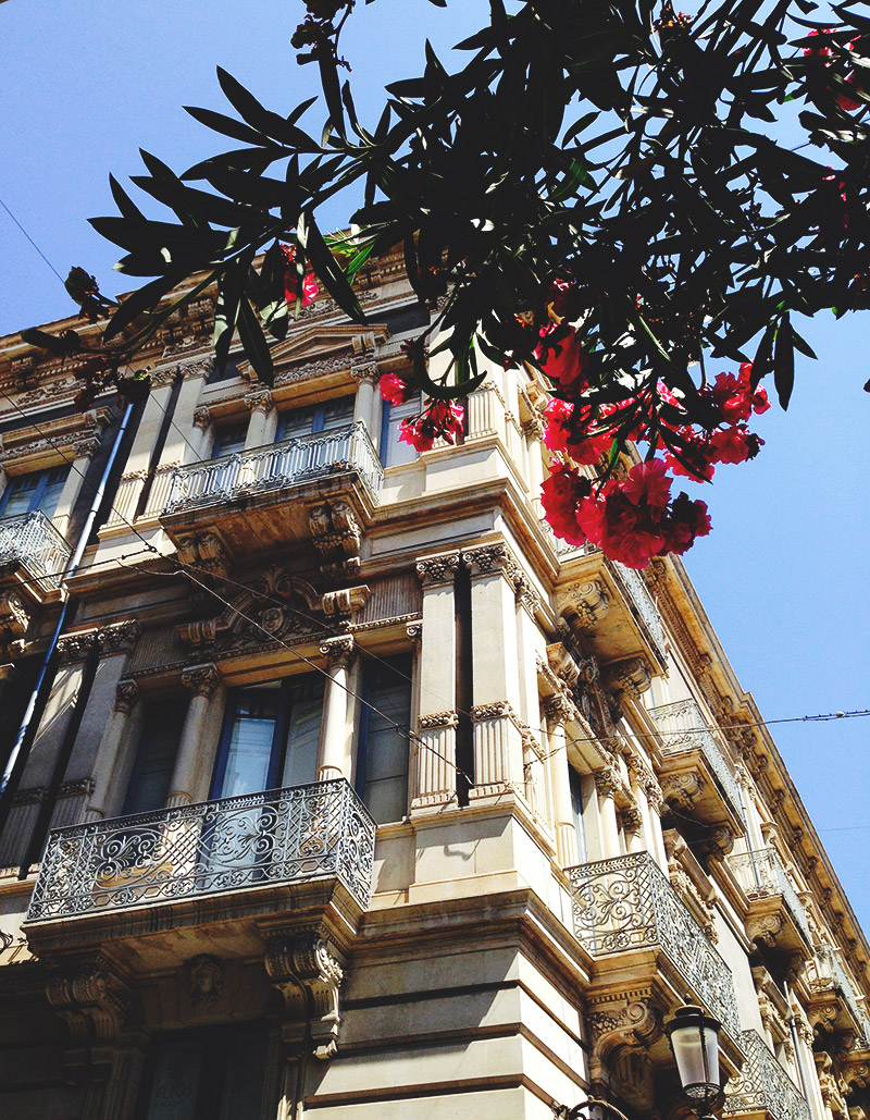 live-deaf-family-sicily-building-pink-flowers