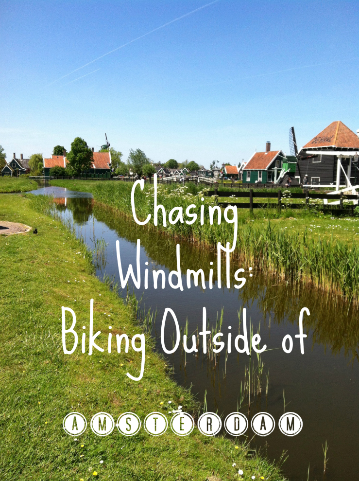 biking outside of amsterdam