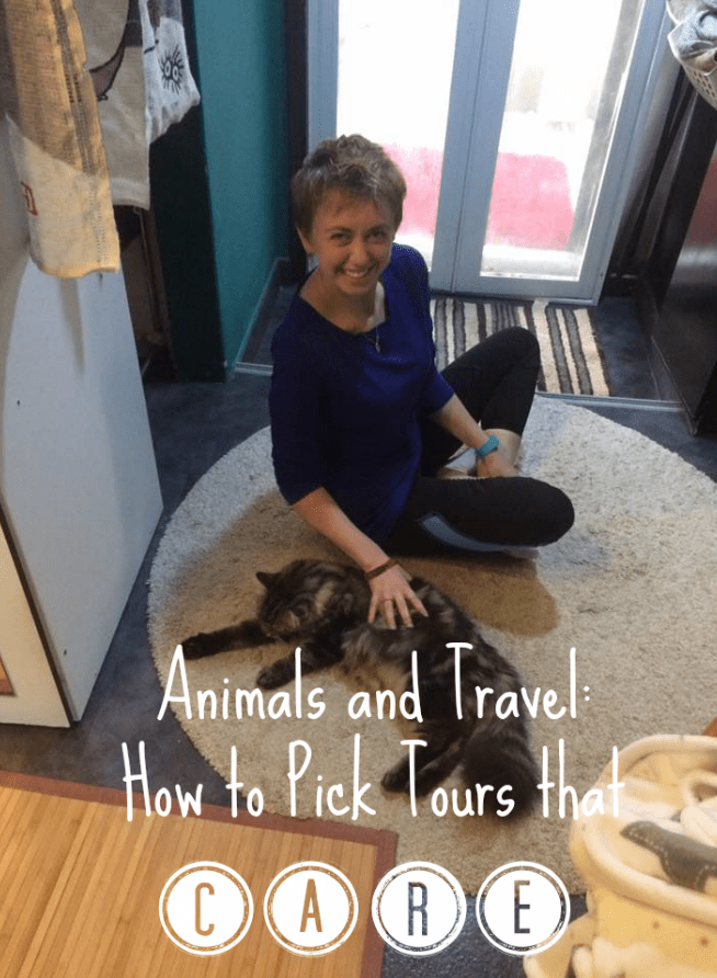 animals tours that care