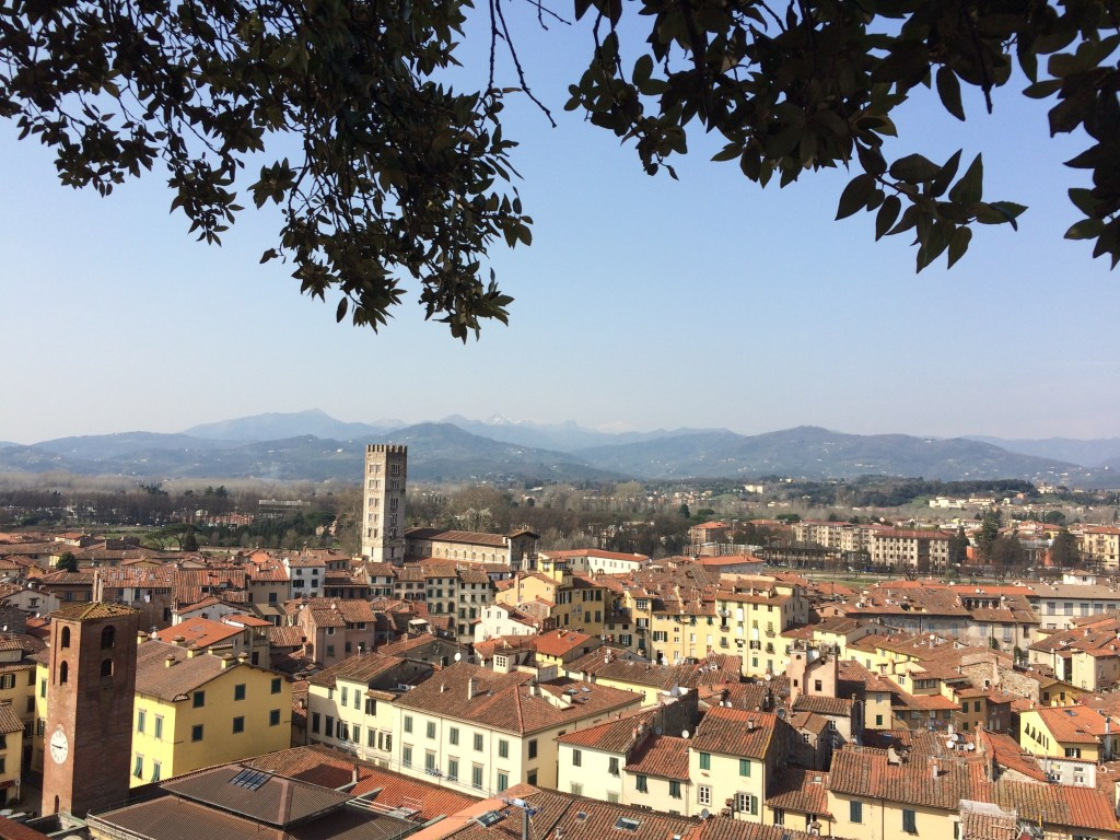 restaurants in lucca italy