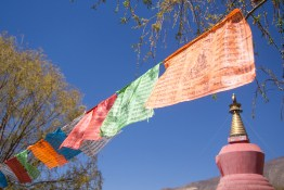 wayfinding-samye-tibet-14