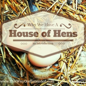 House of Hens