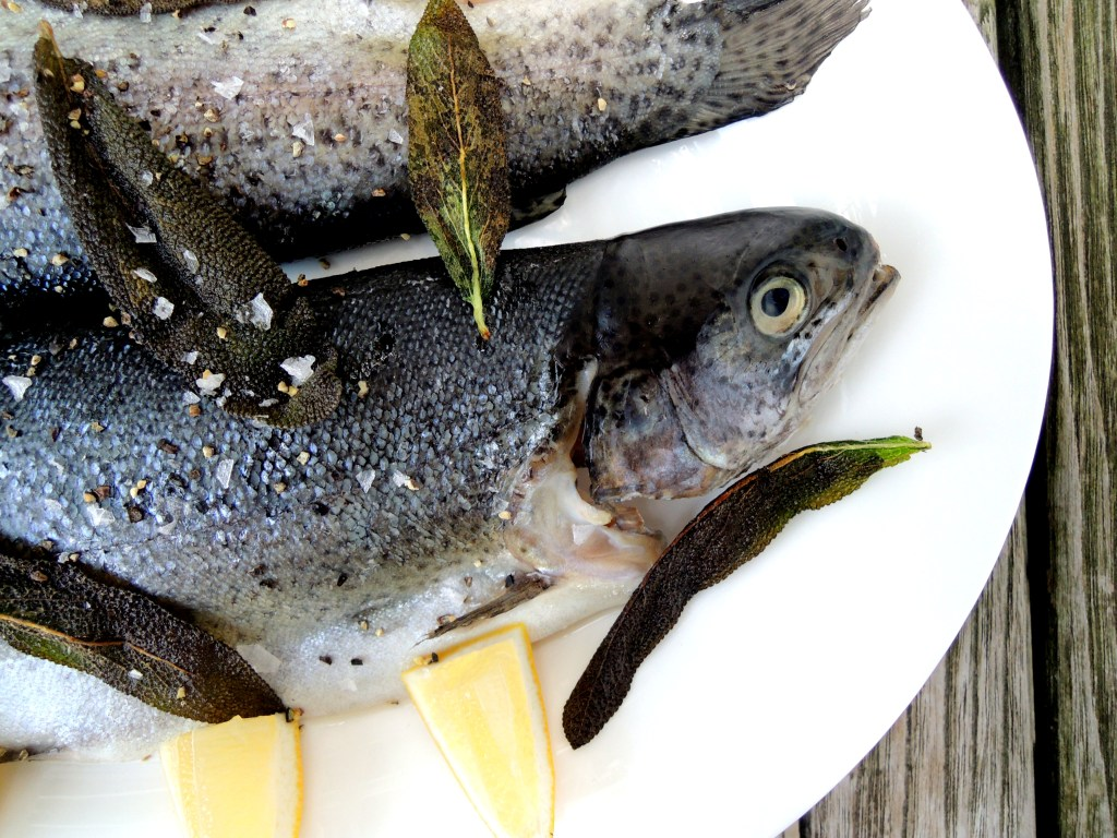 Fish, trout, sauteed trout with sage and white wine 2
