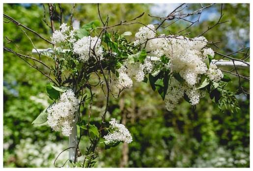 White & green flower arch