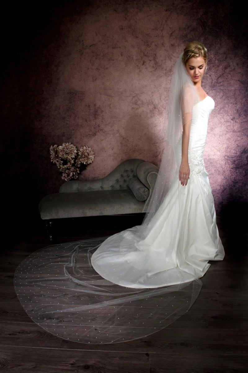 """cathedral veil with crystals """"falling stars"""" on blonde bride"""