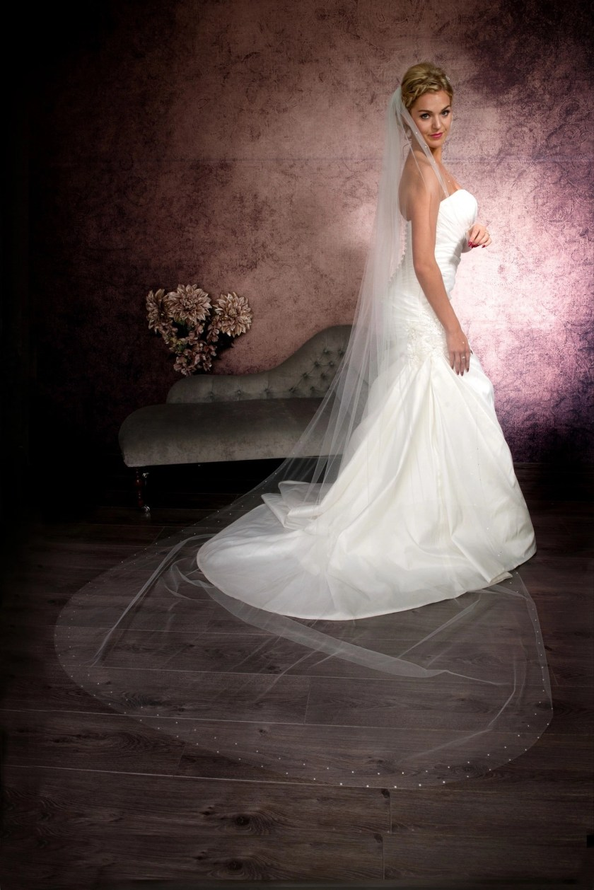 Beautiful bride wearing a single layer cathedral length veil