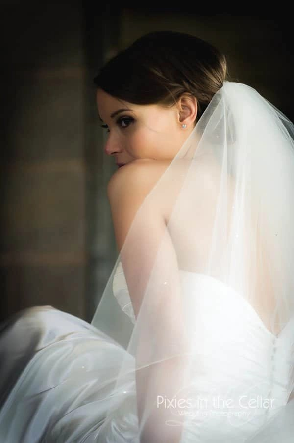 bride in veil portrait