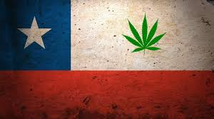 Chile Opens First Medical Cannabis Club