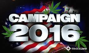 This Election Could Determine the Future of Pot in America