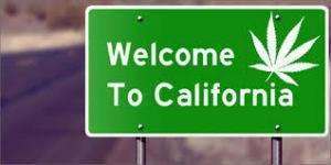 Your California Cannabis Legalization Launch Guide