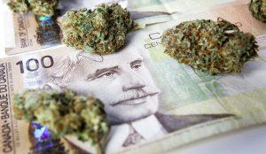 BMO first major bank to lead marijuana equity financing