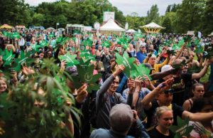 Liberating Medical Cannabis in the Netherlands