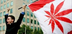 Marijuana bill passes Canadian Senate vote 44-29