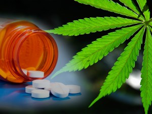 New Study Confirms: Where Marijuana Is Legal, Opioid Prescriptions Fall