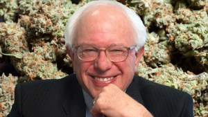 Bernie Sanders Backs Bill To Punish States With Harsh Marijuana Laws
