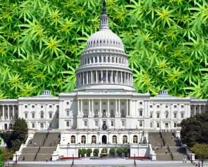 First Marijuana Reform Bill Clears Congressional Committee
