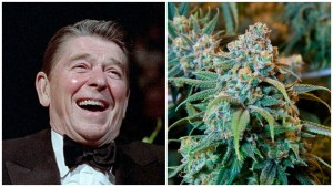 The US Stopped Other Countries from Legalizing Weed for Generations