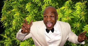 Mike Tyson shops TV show about life as marijuana grower