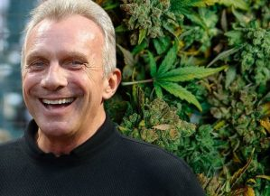 Former 49ers QB Joe Montana, partners invest $75M in marijuana business